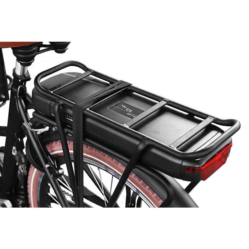 smart coasting pedelec e bike lastenrad 250w 26 zoll goldbraun. Black Bedroom Furniture Sets. Home Design Ideas