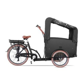Smart Coasting  Pedelec E-Bike Lastenrad 250W 26 Zoll Goldbraun